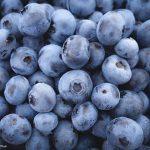 Blueberry Smoothie Recipe Without Yogurt