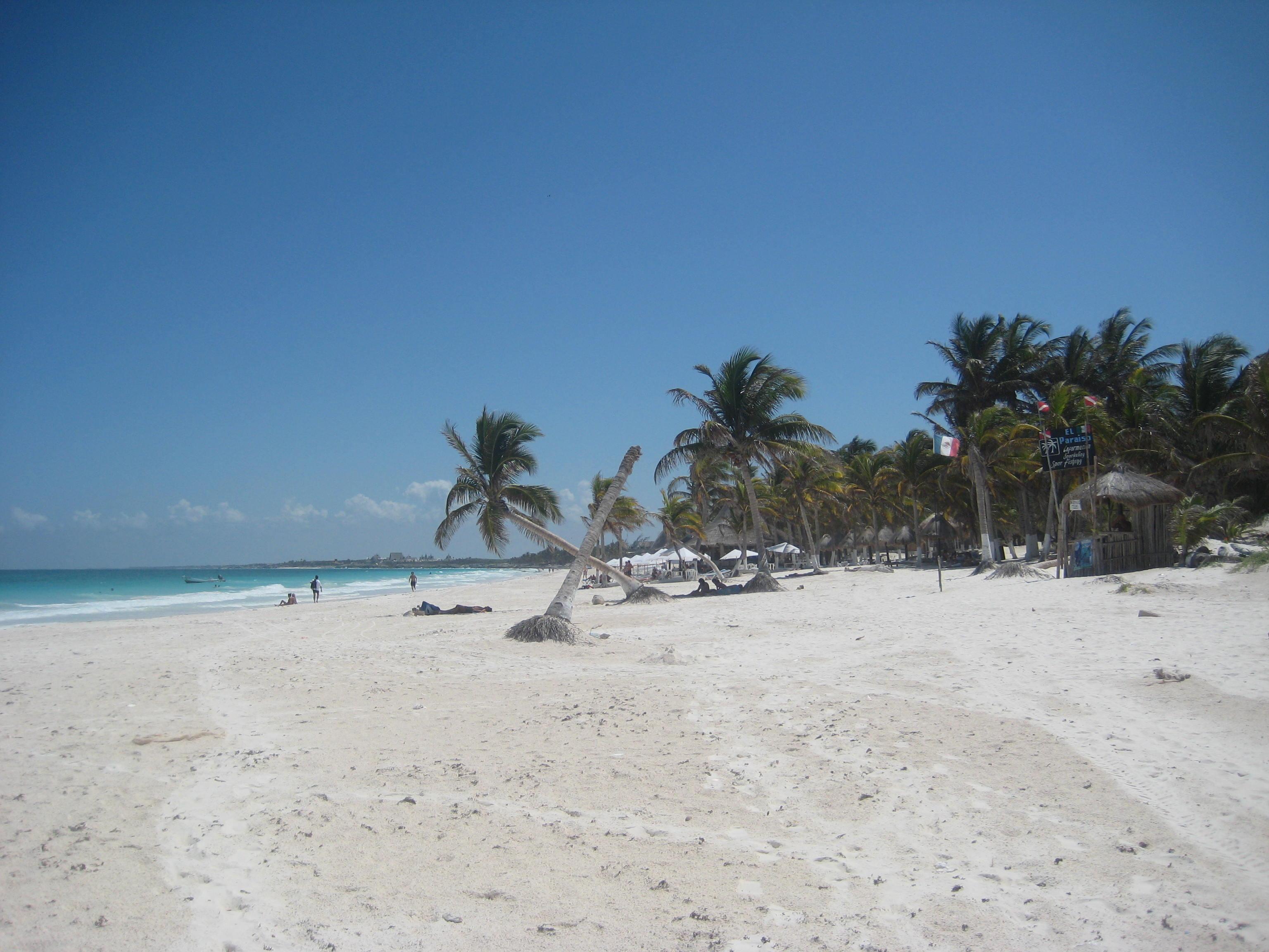 hopskipdive playa el paraiso tulum mexico