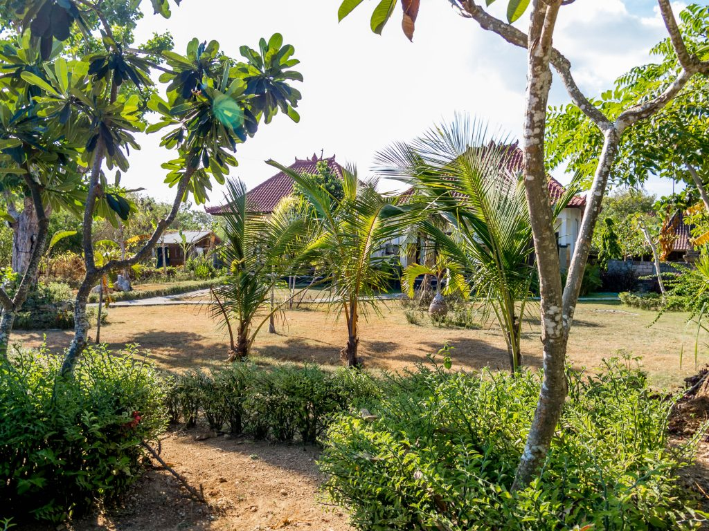 Kubu Sunset Garden, Accommodation Nusa Lembongan